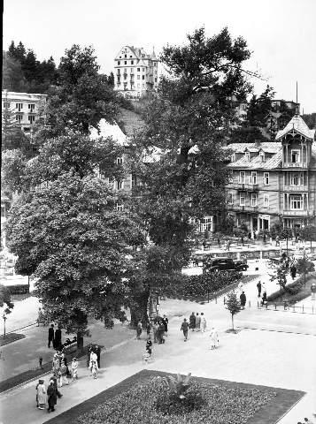 Krynica, Witoldówka, stara fotografia